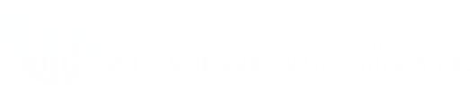 Logo Kancelarii Biegłych Rewidentów WEC Witczak i Wspólnicy Sp. k.